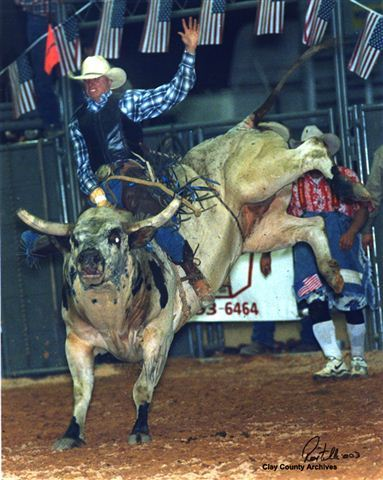 A bull-rider riding a bull during a rodeo